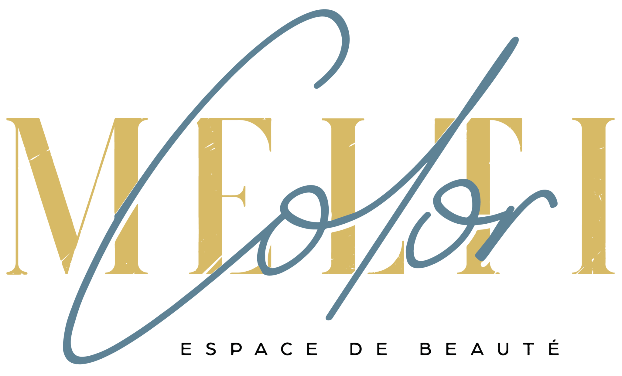 Logo Melticolor